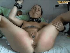 white_rabbit_cam sex cam girl image